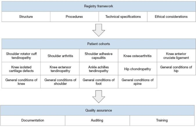 Figure 2 Outline of the structure of the registry. The first section contains the Registry Framework, middle section includes the Registry Cohorts, and the bottom section contains information on Quality Assurance and Data Management.