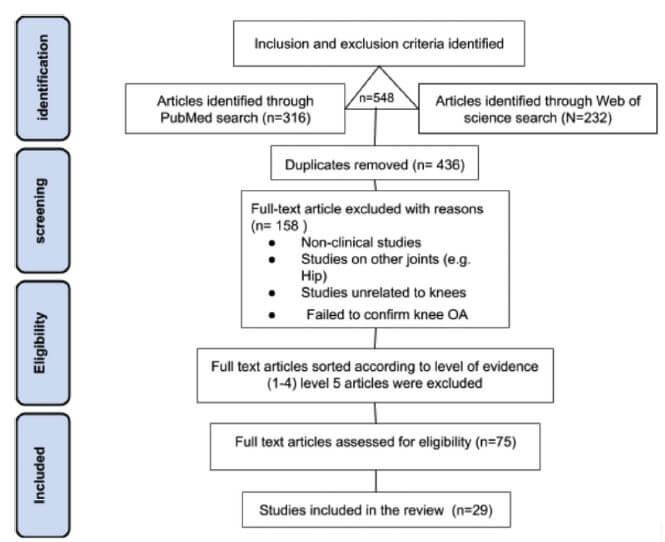 PRISMA systematic literature search inclusion and exclusion criteria.