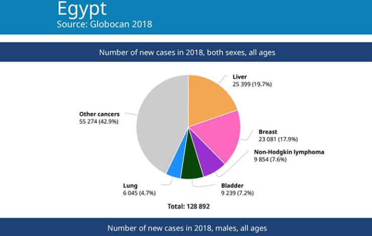 Figure 2 Number of new cases in 2018, both sexes, all ages in Egypt