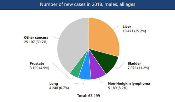 Figure 3: Number of new cases in 2018, males all ages in Egypt.
