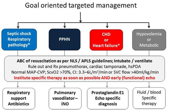 Goal oriented targeted management and role of echocardiography in instituting specific intervention.
