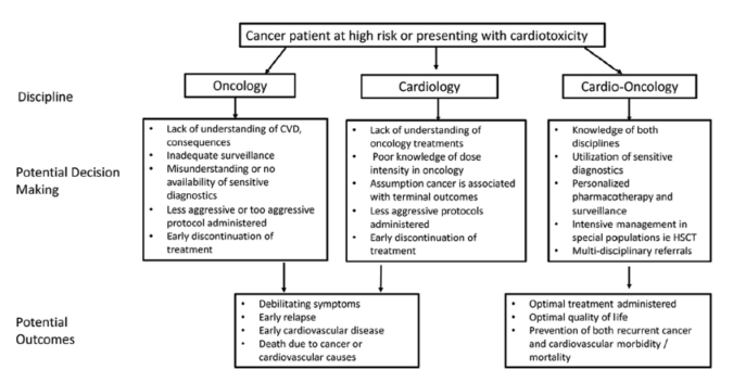 Rationale of Cardio-Oncology Care